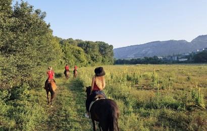 Конные прогулки в Севастополе